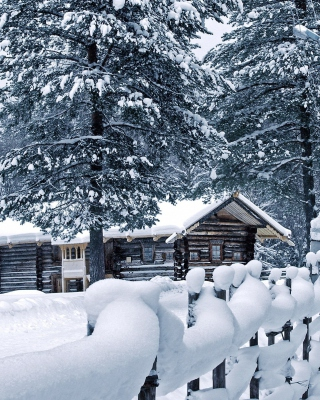 Holiday Snow Days - Obrázkek zdarma pro Nokia 300 Asha