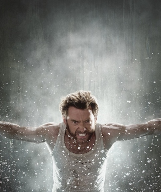 Wolverine - Obrázkek zdarma pro Nokia Asha 310