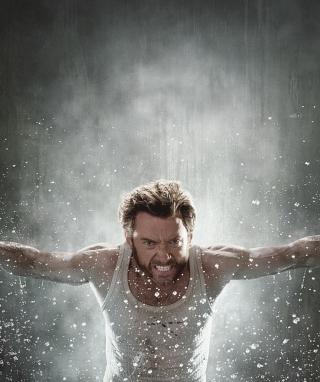 Wolverine - Obrázkek zdarma pro 360x400