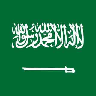 Flag Of Saudi Arabia - Obrázkek zdarma pro iPad mini 2