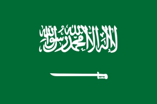 Flag Of Saudi Arabia - Obrázkek zdarma pro 480x400