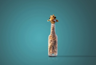 Giraffe In Bottle - Obrázkek zdarma pro Desktop Netbook 1366x768 HD