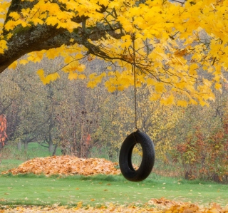 Tire Swing - Obrázkek zdarma pro 320x320