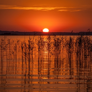 Summer Red Sunset - Obrázkek zdarma pro iPad 3