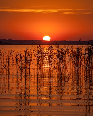 Summer Red Sunset - Obrázkek zdarma pro 240x432