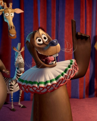 Madagascar 3 Cartoon - Obrázkek zdarma pro Nokia 206 Asha