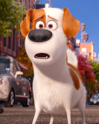 The Secret Life of Pets, Max and Snowball - Obrázkek zdarma pro Nokia C3-01