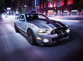 Shelby Mustang - Obrázkek zdarma pro Samsung Galaxy A