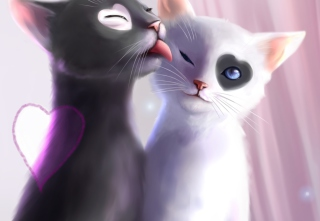 Black And White Cats Romance Picture for Android, iPhone and iPad