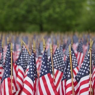 Usa Memorial Day - Obrázkek zdarma pro 128x128