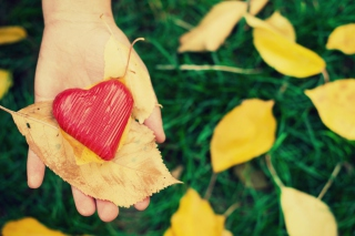 I Heart Autumn - Obrázkek zdarma pro 320x240