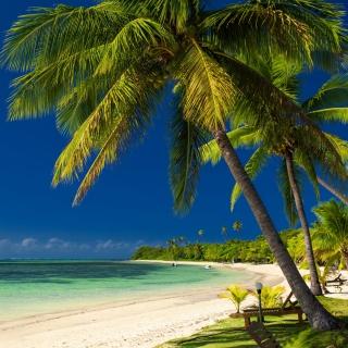 Paradise Coast Dominican Republic - Obrázkek zdarma pro 2048x2048
