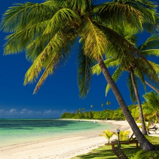 Paradise Coast Dominican Republic - Obrázkek zdarma pro iPad mini 2
