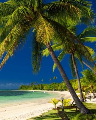 Paradise Coast Dominican Republic - Obrázkek zdarma pro 640x1136