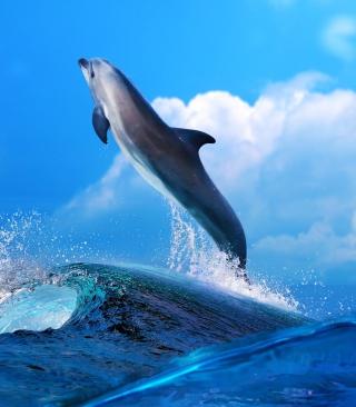 Dolphin - Obrázkek zdarma pro 640x960