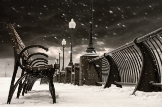 Montreal Winter, Canada Wallpaper for Android, iPhone and iPad