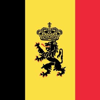 Belgium Flag and Gerb - Obrázkek zdarma pro iPad mini