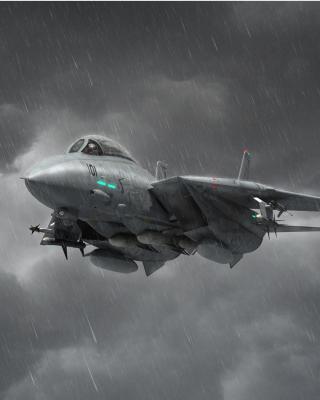 Grumman F 14 Tomcat Interceptor - Obrázkek zdarma pro Nokia X2-02