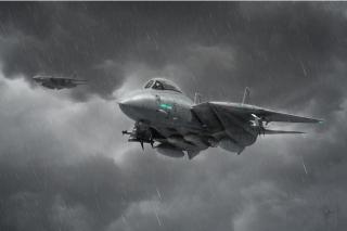 Grumman F 14 Tomcat Interceptor - Obrázkek zdarma pro Sony Xperia Z1