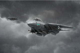 Grumman F 14 Tomcat Interceptor - Obrázkek zdarma pro Nokia X2-01