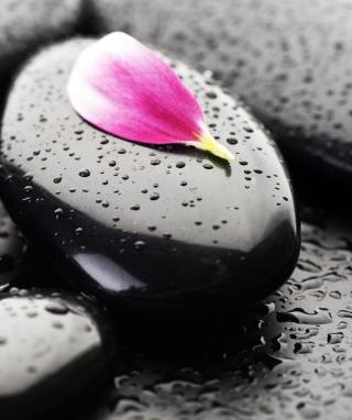 Stones And Petal - Obrázkek zdarma pro Nokia Asha 501