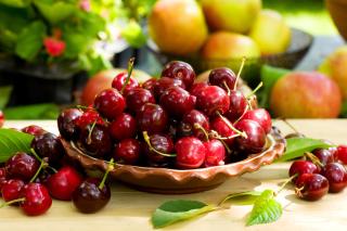 Wild Cherry - Obrázkek zdarma pro Fullscreen Desktop 1280x1024