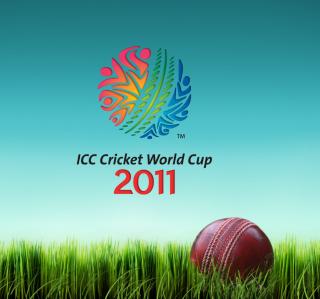 2011 Cricket World Cup - Obrázkek zdarma pro iPad