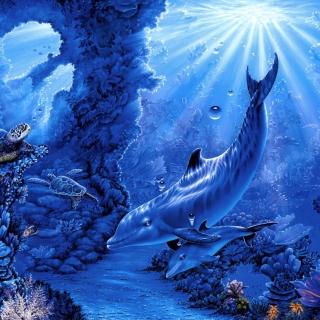 Dolphins Life - Obrázkek zdarma pro iPad 3