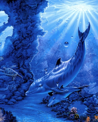 Dolphins Life - Obrázkek zdarma pro Nokia Asha 305