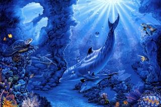 Dolphins Life - Obrázkek zdarma pro Fullscreen Desktop 1600x1200