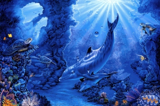 Dolphins Life - Obrázkek zdarma pro Samsung Galaxy Tab 3