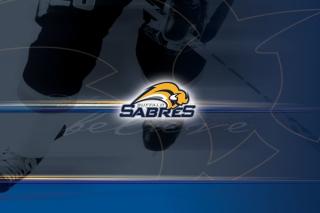 Buffalo Sabres - Obrázkek zdarma pro LG P970 Optimus