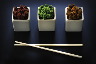 Free Chinese Chopsticks Picture for Android, iPhone and iPad