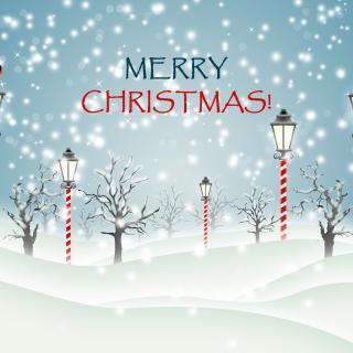 Christmas Park with Snow - Obrázkek zdarma pro iPad 3