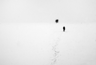 Lonely Winter Landscape Picture for Android, iPhone and iPad
