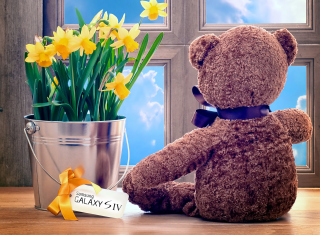 Teddy Bear with Bouquet - Obrázkek zdarma pro Widescreen Desktop PC 1920x1080 Full HD
