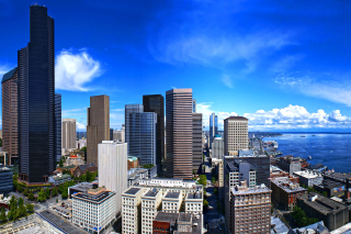 Seattle Life Picture for Android, iPhone and iPad