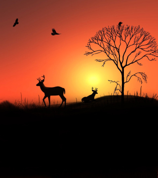 Deer Silhouettes At Red Sunset - Obrázkek zdarma pro 320x320