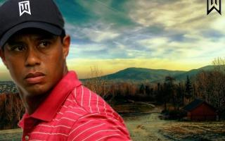 Tiger Woods - Obrázkek zdarma pro 1080x960