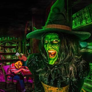 Wicked Witch - Obrázkek zdarma pro iPad