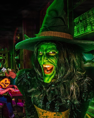 Wicked Witch - Obrázkek zdarma pro 640x960