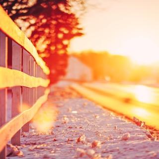 Winter Landscape Fence - Obrázkek zdarma pro iPad Air