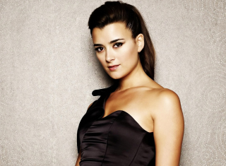 Cote de Pablo Picture for Android, iPhone and iPad