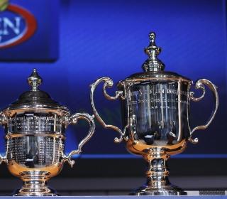 US Open Trophy Tennis - Obrázkek zdarma pro 208x208