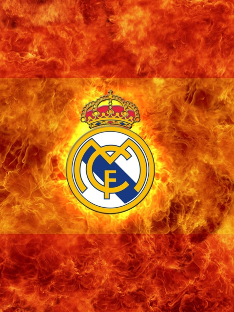 Real-Madrid-480x640.jpg