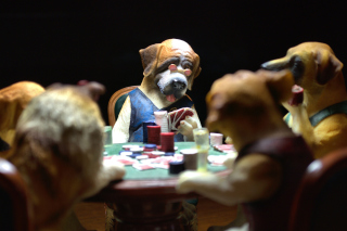 Free Dogs Playing Poker Picture for Android, iPhone and iPad