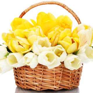Spring Tulips in Basket - Obrázkek zdarma pro 208x208