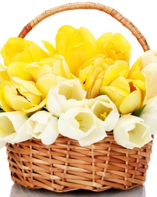 Spring Tulips in Basket - Obrázkek zdarma pro Nokia X6