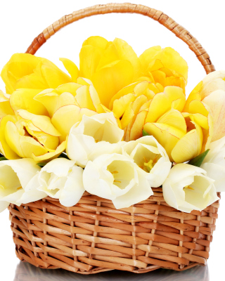 Spring Tulips in Basket - Obrázkek zdarma pro Nokia C-Series