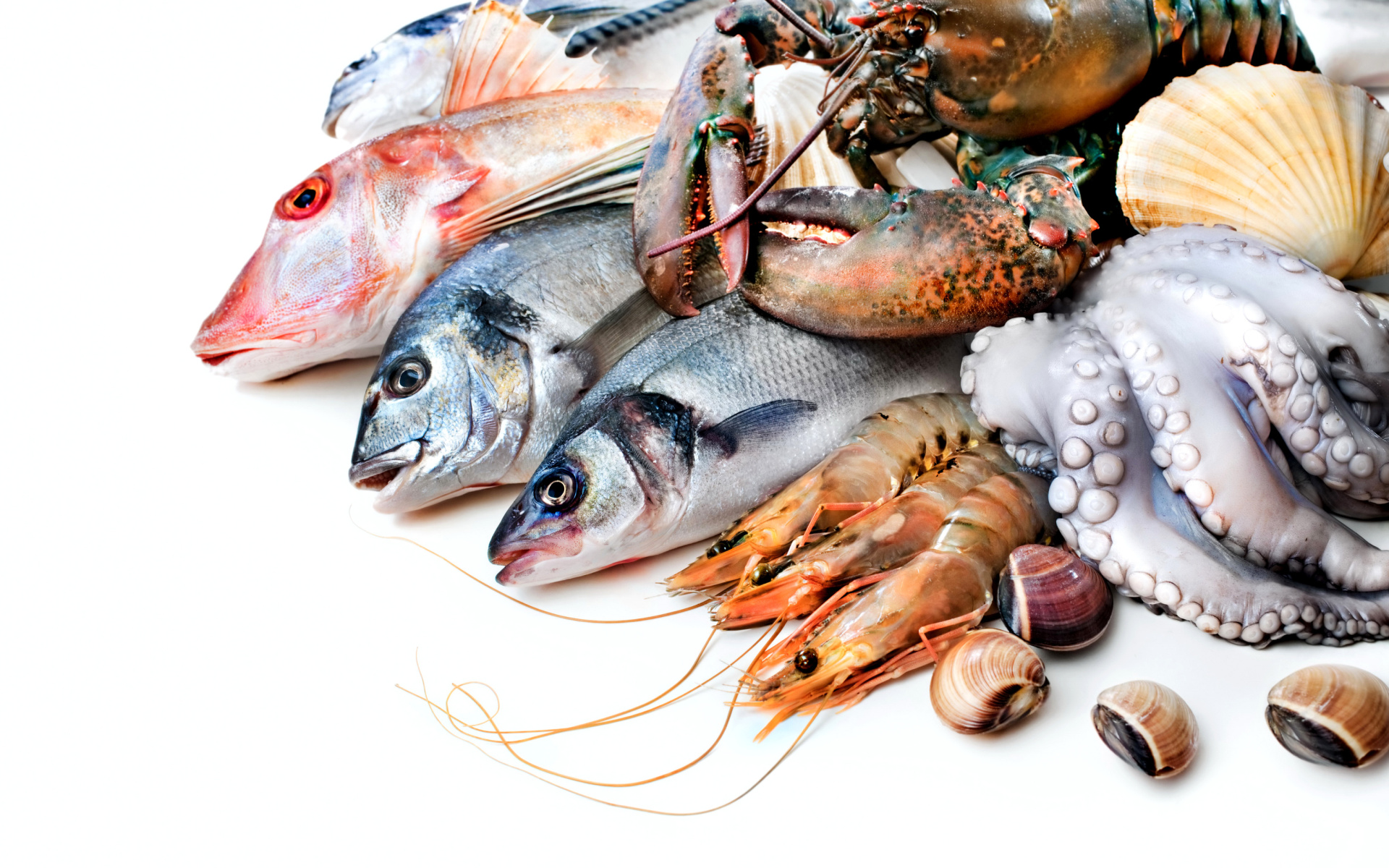 Fresh seafood wallpaper for widescreen desktop pc for Fish and seafood